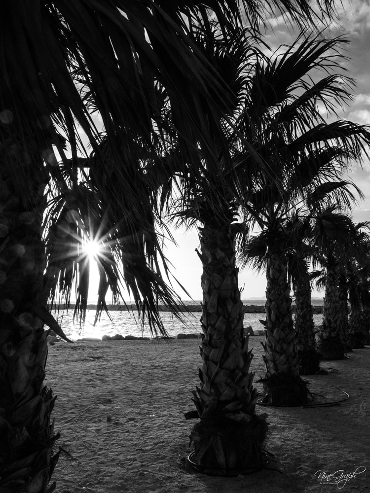 Monochrome, Plage du Mama Beach à Marseille - Monochrome