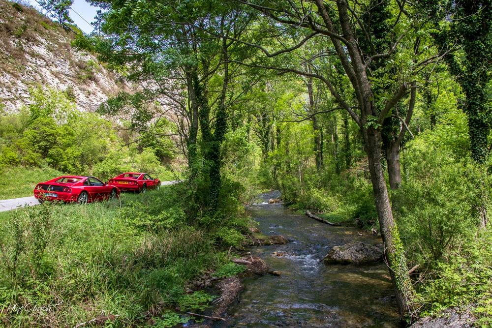 La forêt de Saoû, dans la Drôme