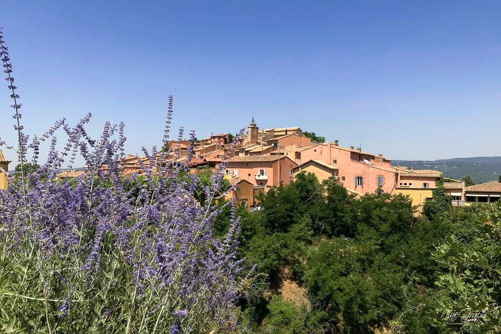 Roussillon, la route de la lavande 2018