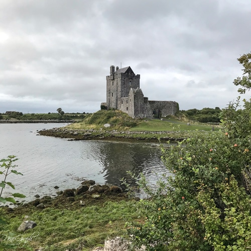 Dunguaire Castle, Irlande, 2018
