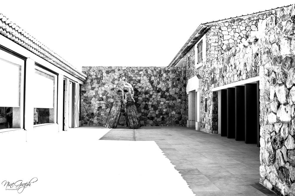 Fondation Carmignac, Porquerolles, été 2018