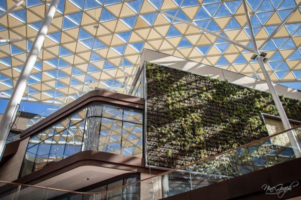 Prado Shopping à Marseille, vue intérieure du mur végétal