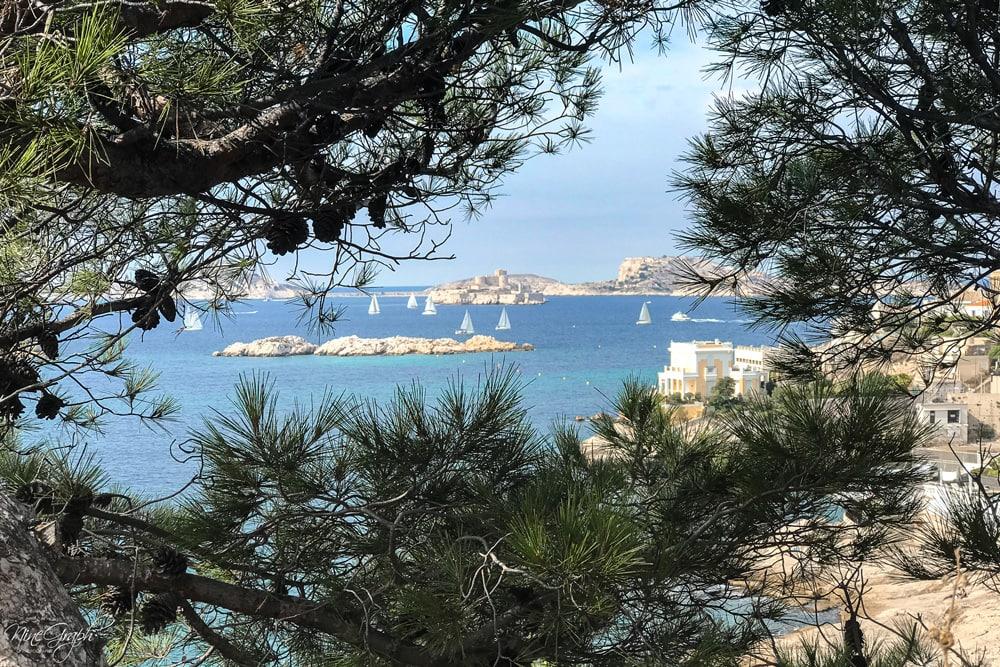 Régate, vue du parc Valmer sur la corniche Kennedy à Marseille