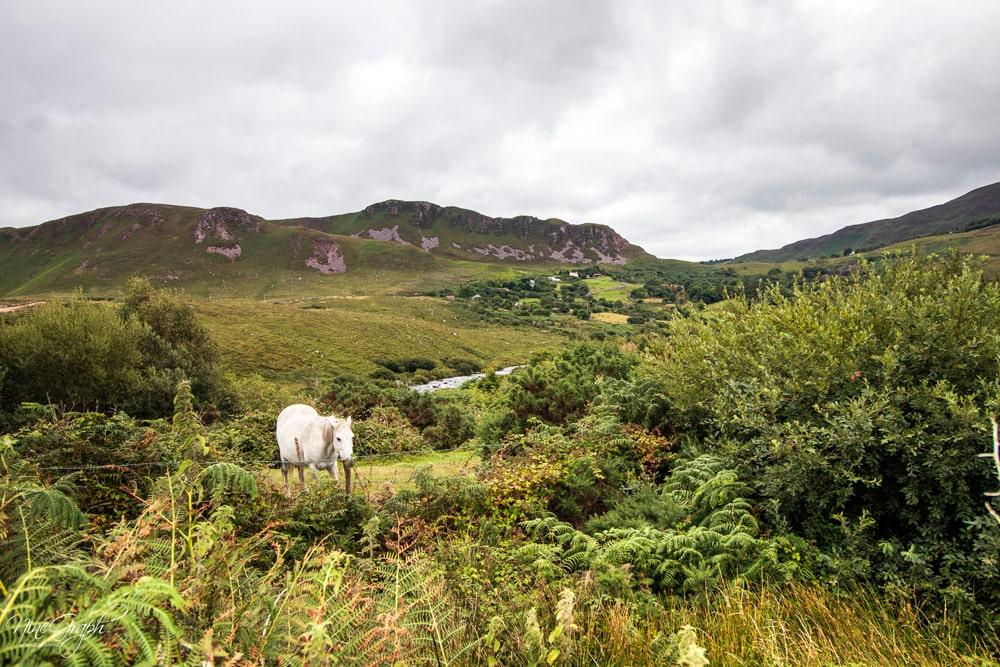 Black Valley, Irlande, 2018