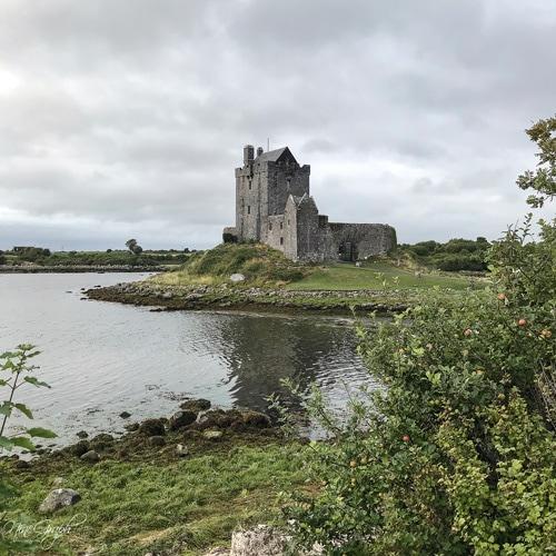 Dunguaire Castle, Irlande, 2018